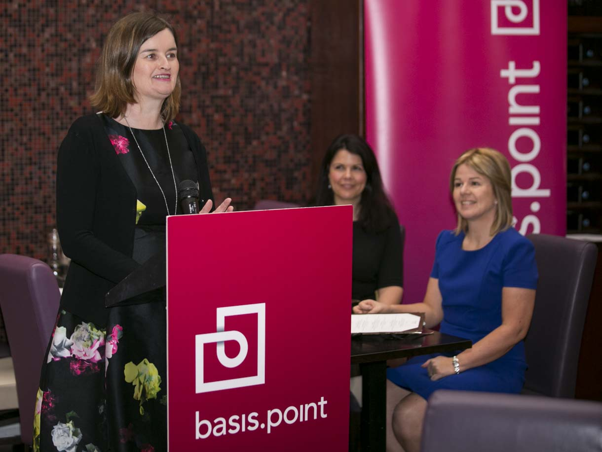 basis.point.ie]
